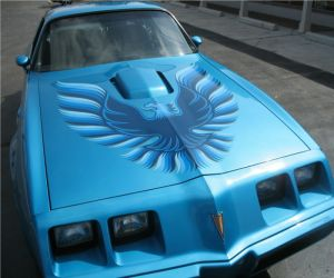 1979 Pontiac Trans AM front