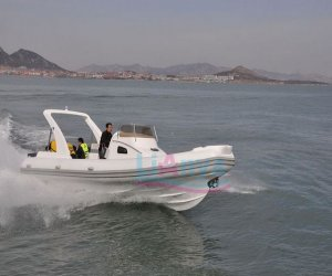 Image of a 2011 lianya 830
